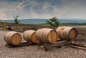 Брожение, или что делает вино таким вкусным